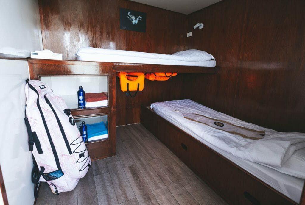 cabin on the smiling seahorse liveaboard