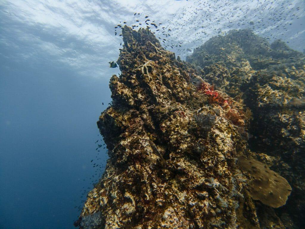 Richelieu Rock dive site