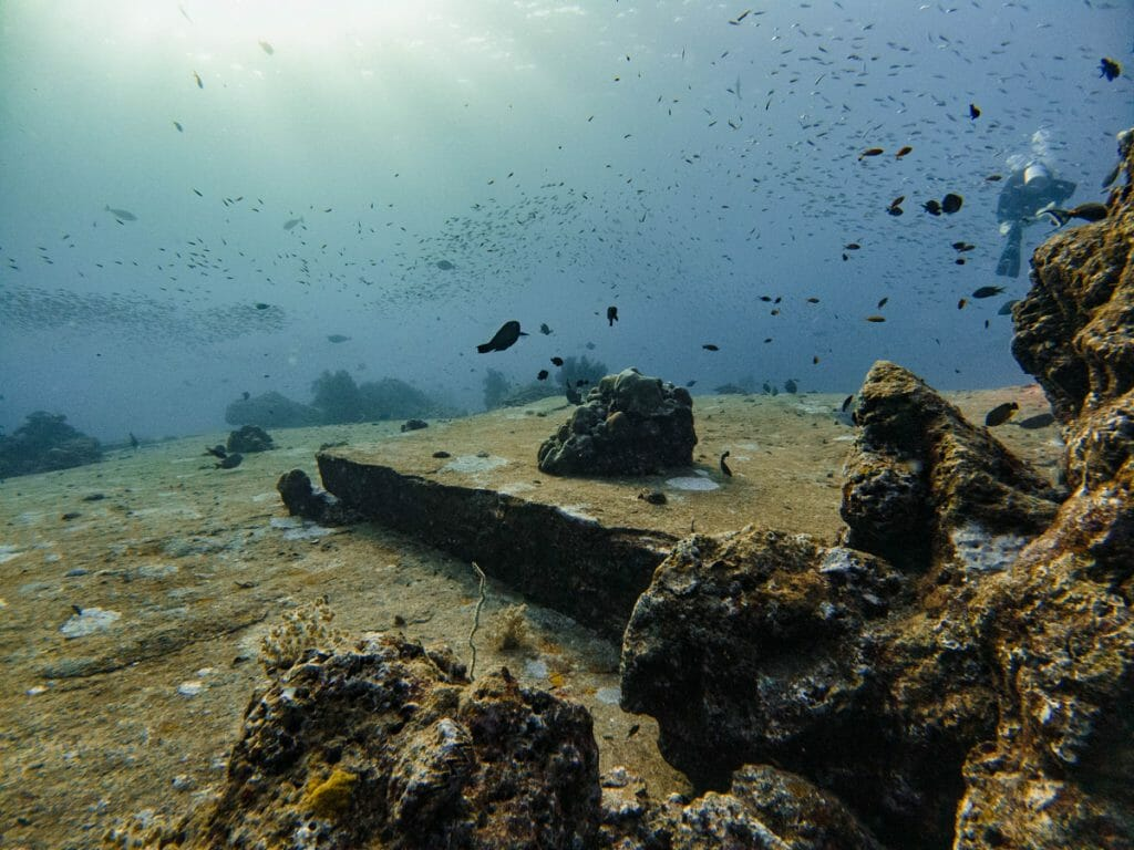 rocks and fish at tachai pinnacle dive site