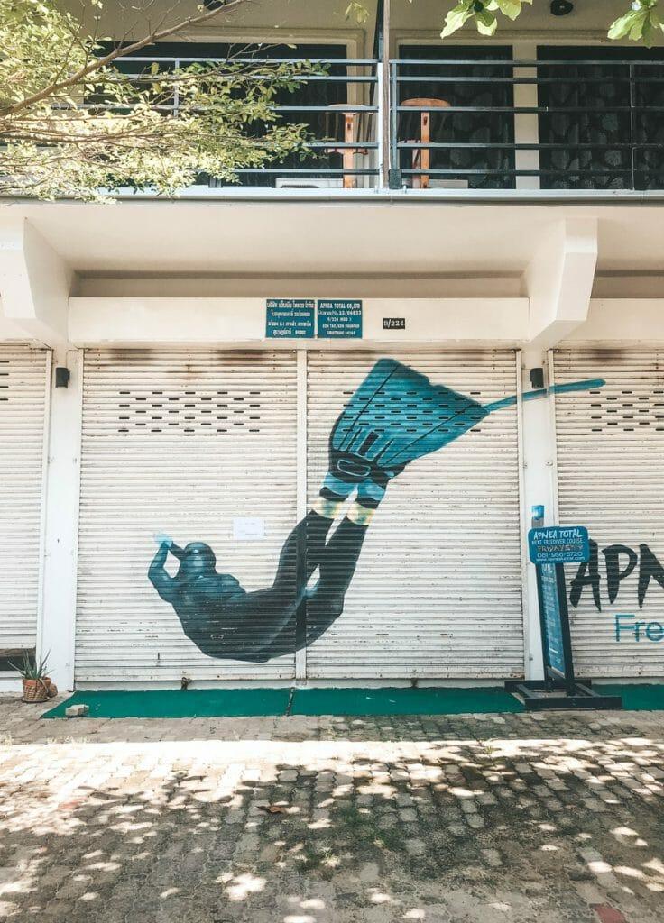 Apnea diver painting on garage door