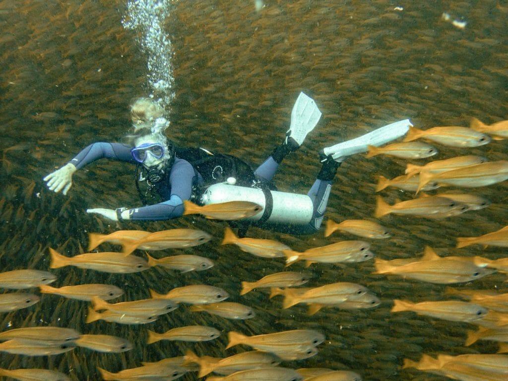 Annika Ziehen diving Sidemount and yellow fish