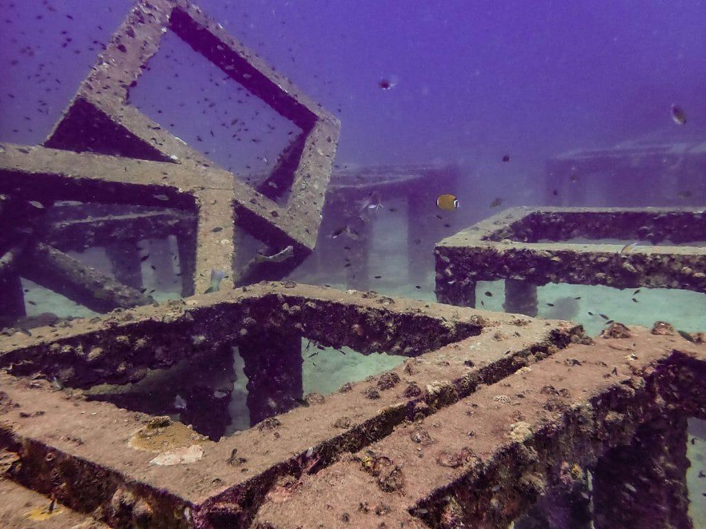 Artificial reef cubes
