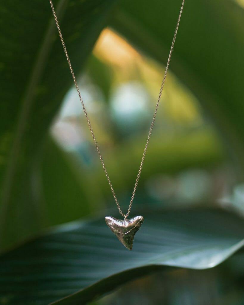 VANDAYA shark tooth necklace